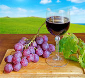 Grape and wine on a chopping board — ストック写真