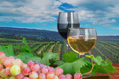Red and white wine in a vineyard — Stock Photo