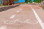 Cykling genom palmerna — Stockfoto