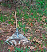 Rake on the ground — ストック写真