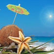 Sun and coconuts — Stock Photo