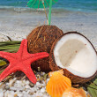 Coconuts and starfish — Stock Photo