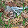 Metal rake — Stock Photo