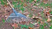Rake on grass and leaves — Stock Photo