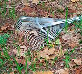 Metal rake — Stock Photo