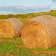 Stock Photo: Hay bales at dusk