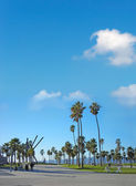 Spiaggia di venezia — Foto Stock