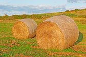 Hay bales at dusk — Stock Photo