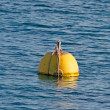 Yellow buoy — Stock Photo #41275579