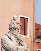 Seagull on Tommaseo statue — Foto de Stock