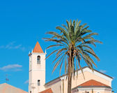 Belltower with palm — Stock Photo