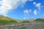 Bulutlu gökyüzü ve yeşil tepe — Stok fotoğraf