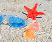 Seashells and goggles — Stock Photo