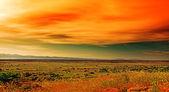 Sunset in Sardinia — Stock Photo