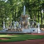 Fountain and formal garden — Stock Photo