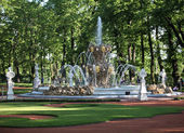 Fountain and formal garden — Stock Photo