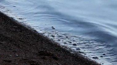 Sabbia e onde — Video Stock