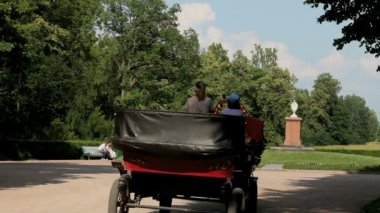 Driving off horse carriage — Stock Video
