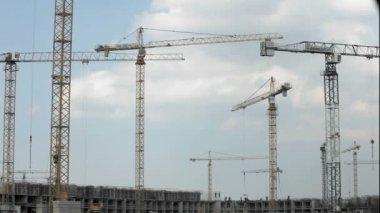 Tower crane — Stock Video