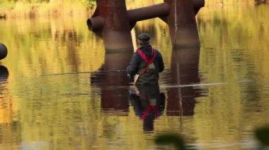 Fisherman in golden water — Stock Video