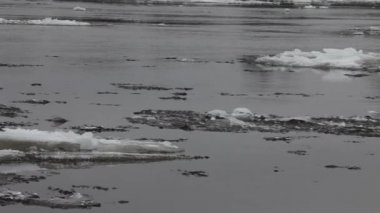 Ice flow on river — Stock Video