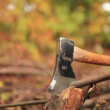 Stock Video: Woodcutter