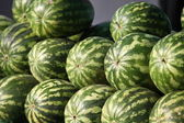 Pile of watermelons — Stock Photo