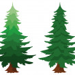 Stock Vector: Two evergreen fir trees