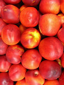 A lot of red nectarines — Stock Photo