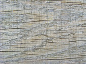 Pattern on a cut of a tree — Zdjęcie stockowe