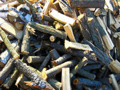 Heap of the prepared fire wood — Stock Photo