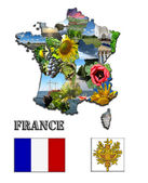 The map and the arms of France — Stockfoto