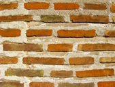 Wall from a red brick — Photo