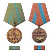 Stock Photo: Medals for defense of Odessand capture of Budapest
