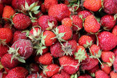 Set of a ripe strawberry — 图库照片