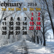 Stock Photo: Calendar for February of 2014 with winter landscape