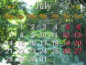Calendar for the July of 2014 on the background of spider's web — Stock Photo