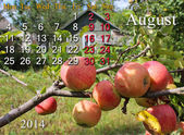 Calendar for the August of 2014 year with apples — Stock Photo