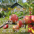 Calendar for the August of 2014 — Stock Photo