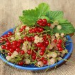 Clusters of berries red and white currant on the plate — Stock Photo