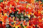 Calendar for June of 2014 on the background of lilies — Stock Photo