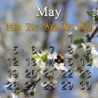 Calendar for the May of 2014 year — Stock Photo