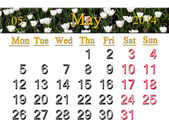 Calendar for May of 2014 with tulips on the flower-bed — Stock Photo