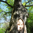 Sculpture of personage cut out from a tree — Stock Photo
