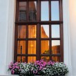 Window with hanging flowers — Stock Photo #40964757