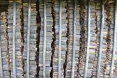 Big heap of the prepared fire wood — Stock Photo