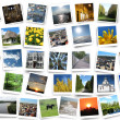 Many motley photos on the white background — Stock fotografie