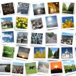 Many motley photos on the white background — Stock Photo