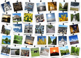 Motley images isolated on the white background — Stock Photo