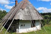 Old rural house in Carpathian region — Stock Photo